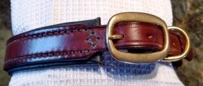 Arlo collar 4
