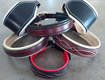 recent dog collars