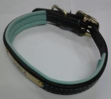 padded collar pic 1